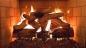 топливо используемое в каминах